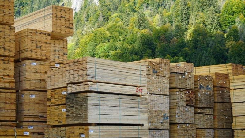 Nu kan klimaeffekten ved træbyggeri nemmere dokumenteres