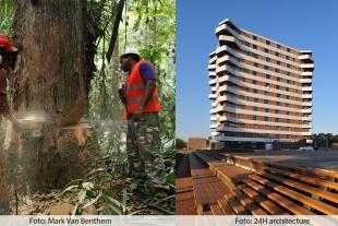 Aarhus får international konference for tropisk træ