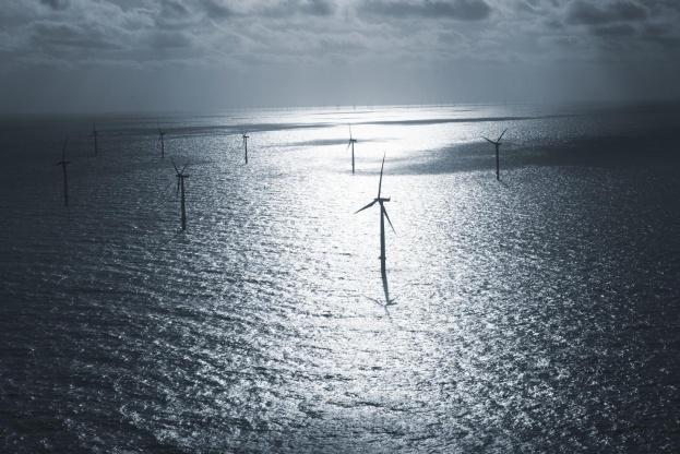 Dong har vundet kontrakten på at opføre verdens største havvindmøllepark. Foto: Dong Energy A/S.