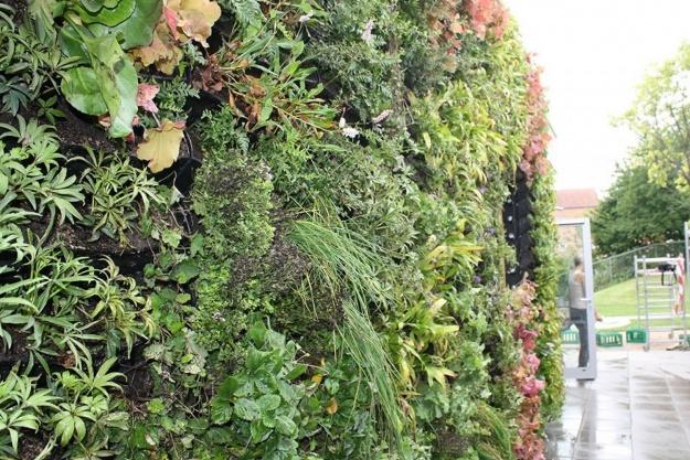 Grønt facadesystem henter vand fra taget