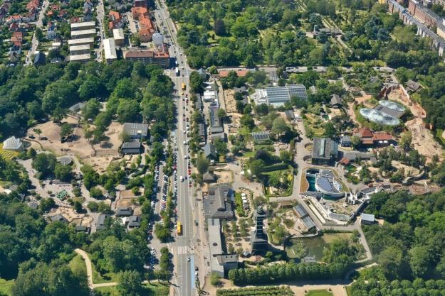 BIG tegner pandaanlæg til København Zoo
