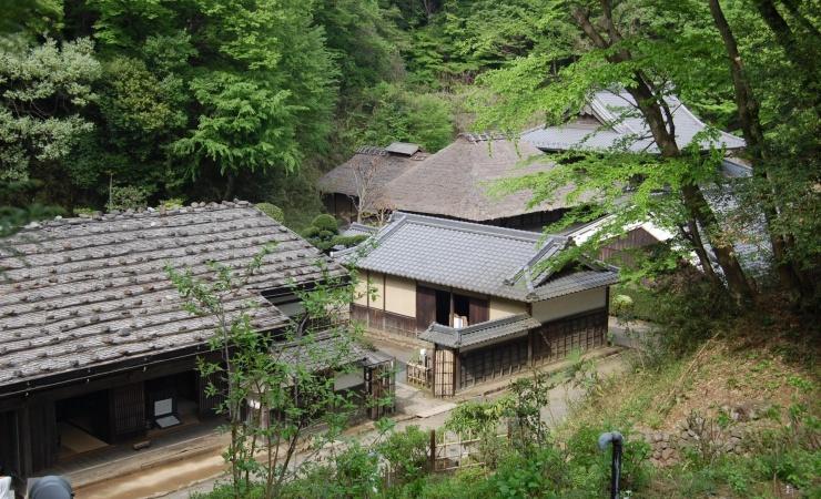 Dengang træhuse blev bygget med respekt for træet
