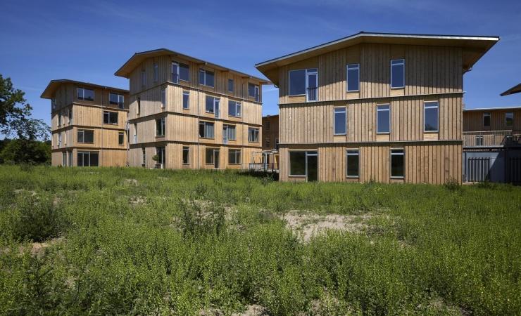 Moe stifter Videnscenter for Træbyggeri