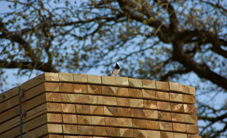Foreningen Træ i Byggeriet: Forslag til klimaindsatser er uambitiøse