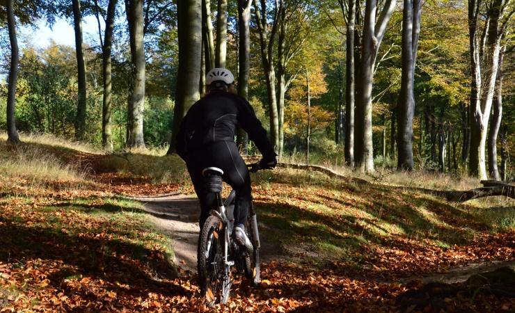 Ny forskning bekræfter: Motion mindsker risiko for førtidspension