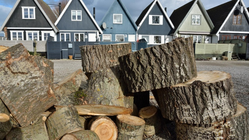 Der bør bygges mere i træ, mener forsker