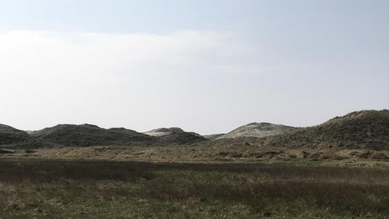 Nordeuropas største vandland gemmes i vestjyske klitter