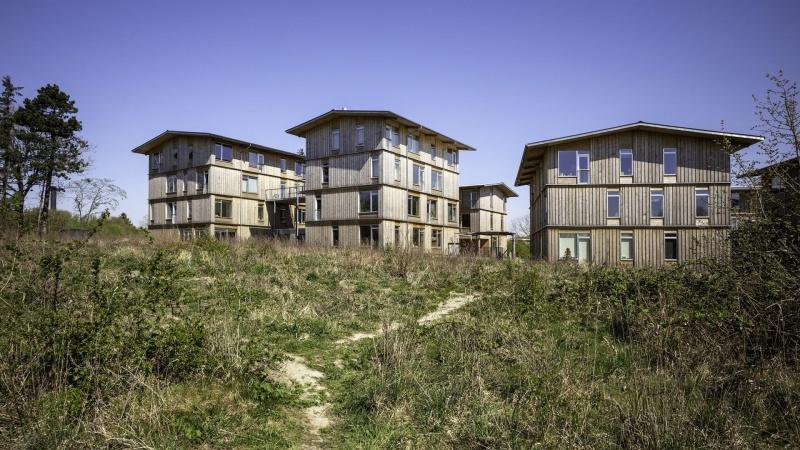 FSC-vinduesrammer i træbyggeri garanterer ny skovrejsning
