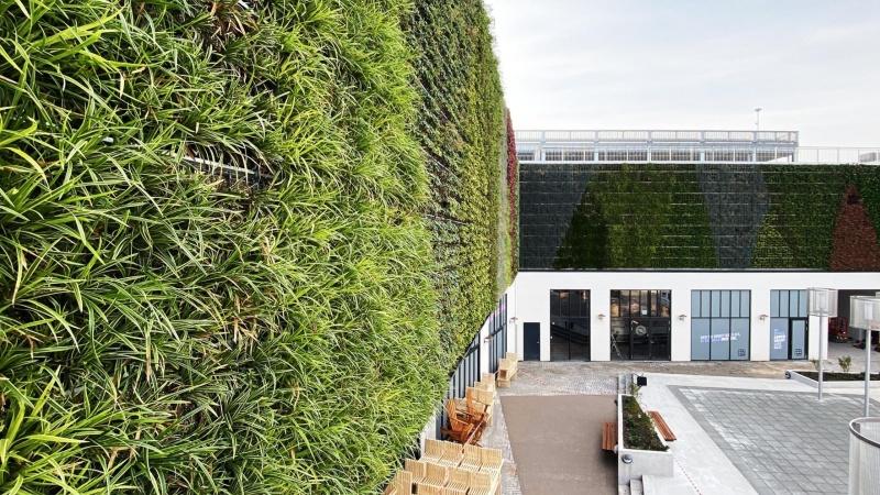 Amager Centret har fået Danmarks største plantevæg